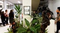Exposição Arte Raiz  - Osmar Mathias